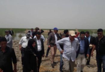 وزير الموارد المائية يفتتح القرية الاستيطانية في اهوار الجبايش - تقرير مصور -