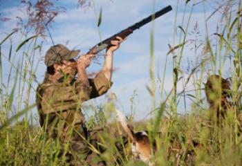 البيئة تحظر استخدام بنادق الصيد في اهوار ذي قار