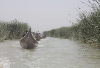 اهوار الجبايش تقاوم ازمة شح المياه وتحافظ على مناسيب مقبولة