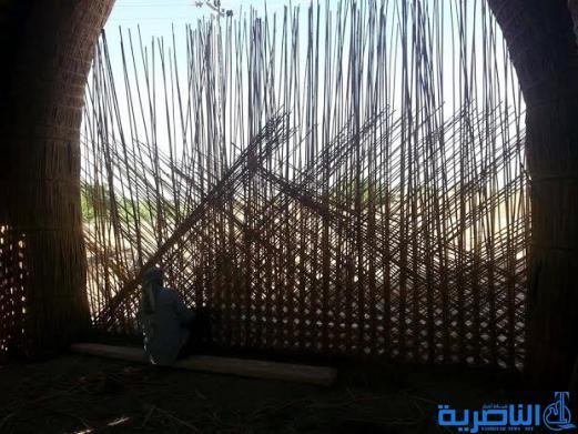 بالصور :كيف تبنى مضايف الناصرية ، بيوت القصب التي تحضى بمنزلة برلمان