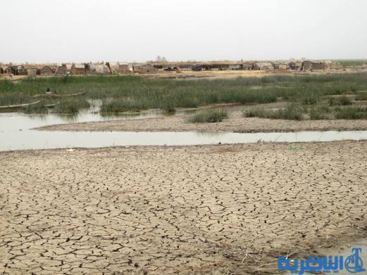 مسؤول محلي يتوقع موجة جفاف غير مسبوقة في صيف ذي قار المقبل