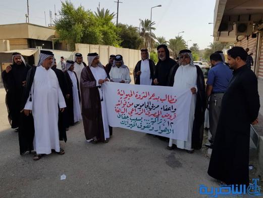 الناصرية : مربو الجاموس يتظاهرون مجددا لاعفائهم من سداد القروض الزراعية