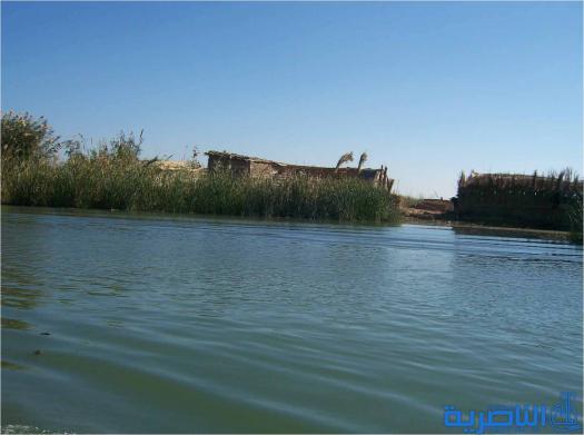بغداد ترد على قائممقام الجبايش .. لا تضلل الحقائق فالمياه تغمر الاهوار