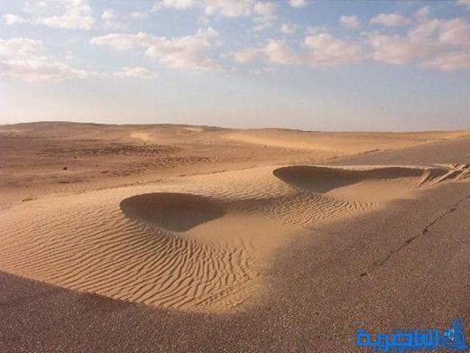 دائرة الكثبان الرملية تقترح خطة سنوية لتثبيت 1500 دونما