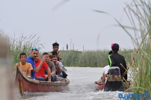 """بالصور:البغداديون في هور الجبايش """" سمج مسكوف ورحلة بمشاحيف وصور للذكرى"""""""