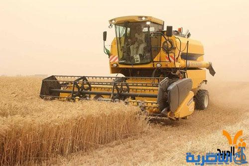 المثنى وذي قار تسوقان اكثر من 12 الف طن من الحنطة والشعير