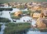 منظمات مدنية تؤسس تجمعا لحماية الأهوار العراقية
